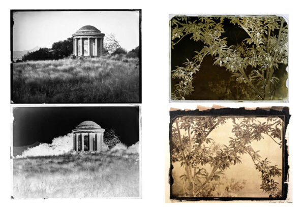 Learning the wet plate collodion technique is a difficult process, since there are several variables to take into account and nothing can be neglected or set aside. The entire process, from cleaning the glass to applying the varnish needs conistent methods that are decisive for a good results. This workshop is intended for the beginner specifically interested in making wet plate collodion negatives suitable for alternative processes printing such as salt paper of albumen paper, giving you a new powerfull and creative tools to be used as a genuine artistic expression. It will covers all the chemichal principles and technical aspects of the wet plate collodion negative process and salt printing process. By the end you will be confident in managing the not so simple art of this processes 3